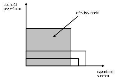 Prawa przywództwa - wykres 1