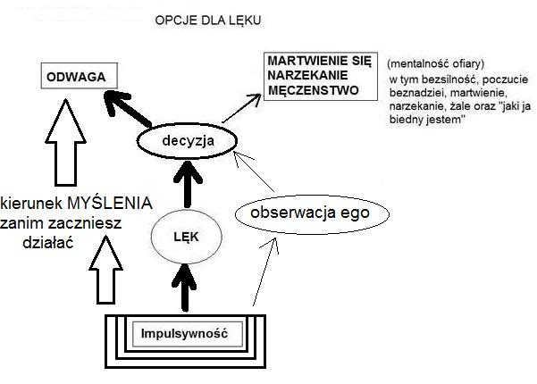 Wykres 10.17 Mind OS Opcje dla lęku do zrobienia