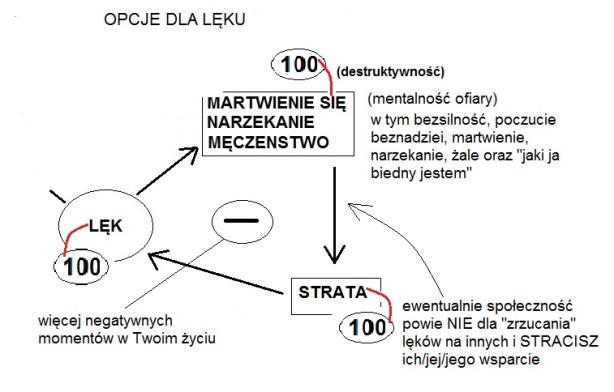"""Wykres 10.9b Mind OS Przykład """"igły"""" portwel 100"""