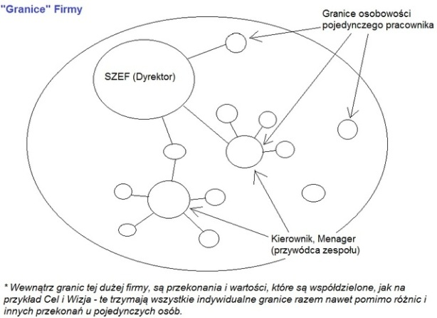 S.O. Umysłu wykres 11.1 Granice Firmy