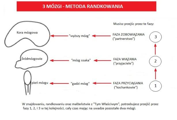 3 Mózgi - Metoda Randkowania